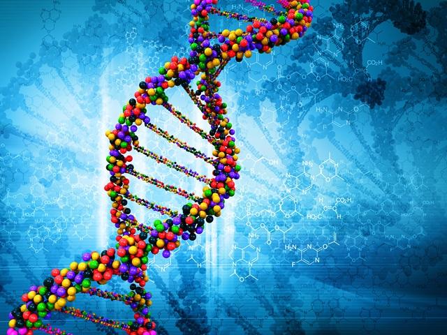 генетическая специализация в магии