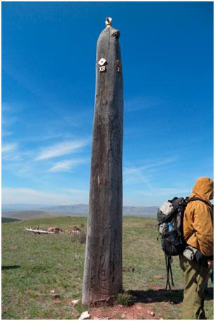 шаманские тотемный столб