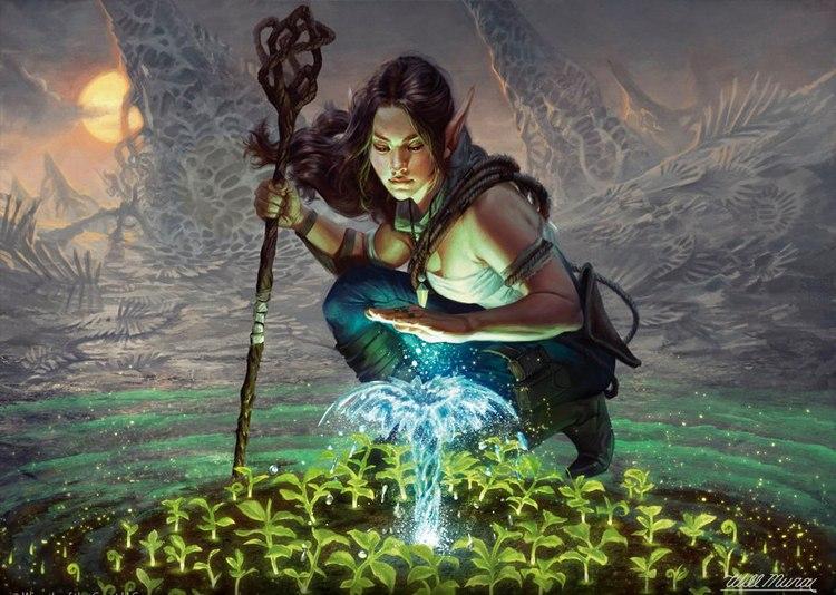 Практики натуральной магии