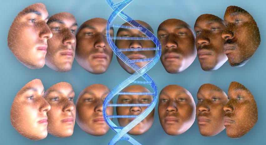 геном вуду