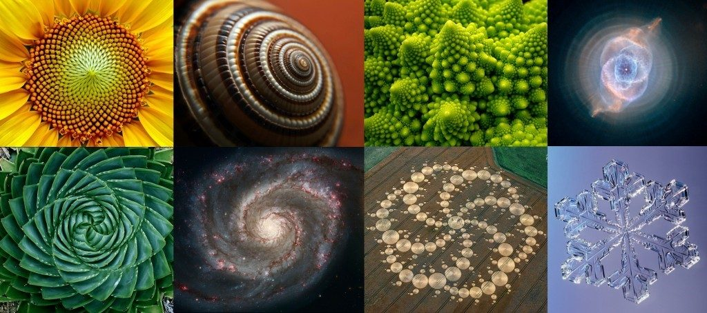 эволюция систем