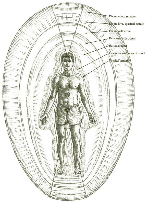 структура тонких тел