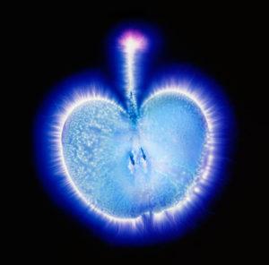 фото яблока кирлиан